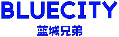BlueCity Holdings IPO